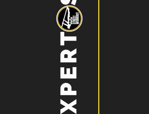 · Rutinas para expertos en Street Workout ·